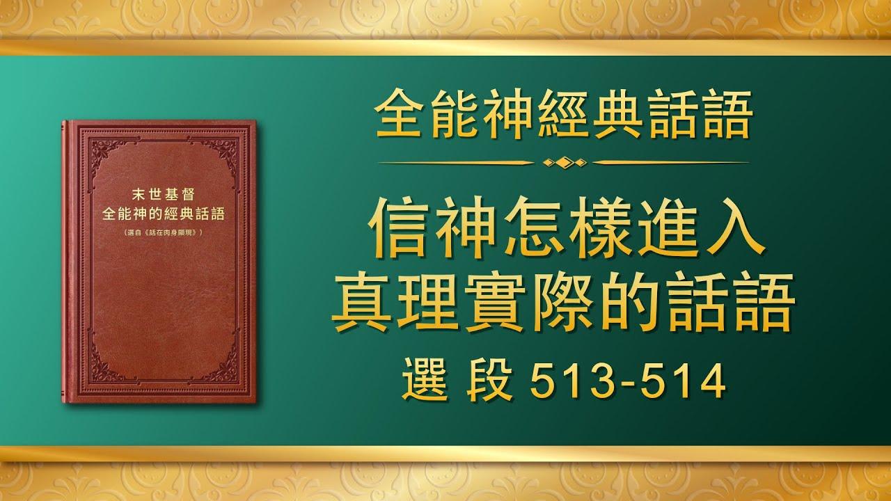 全能神经典话语《信神怎样进入真理实际的话语》选段513-514