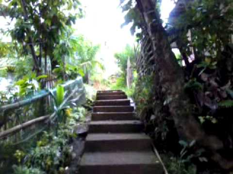 Flores Elementary School Campus with 80 steps