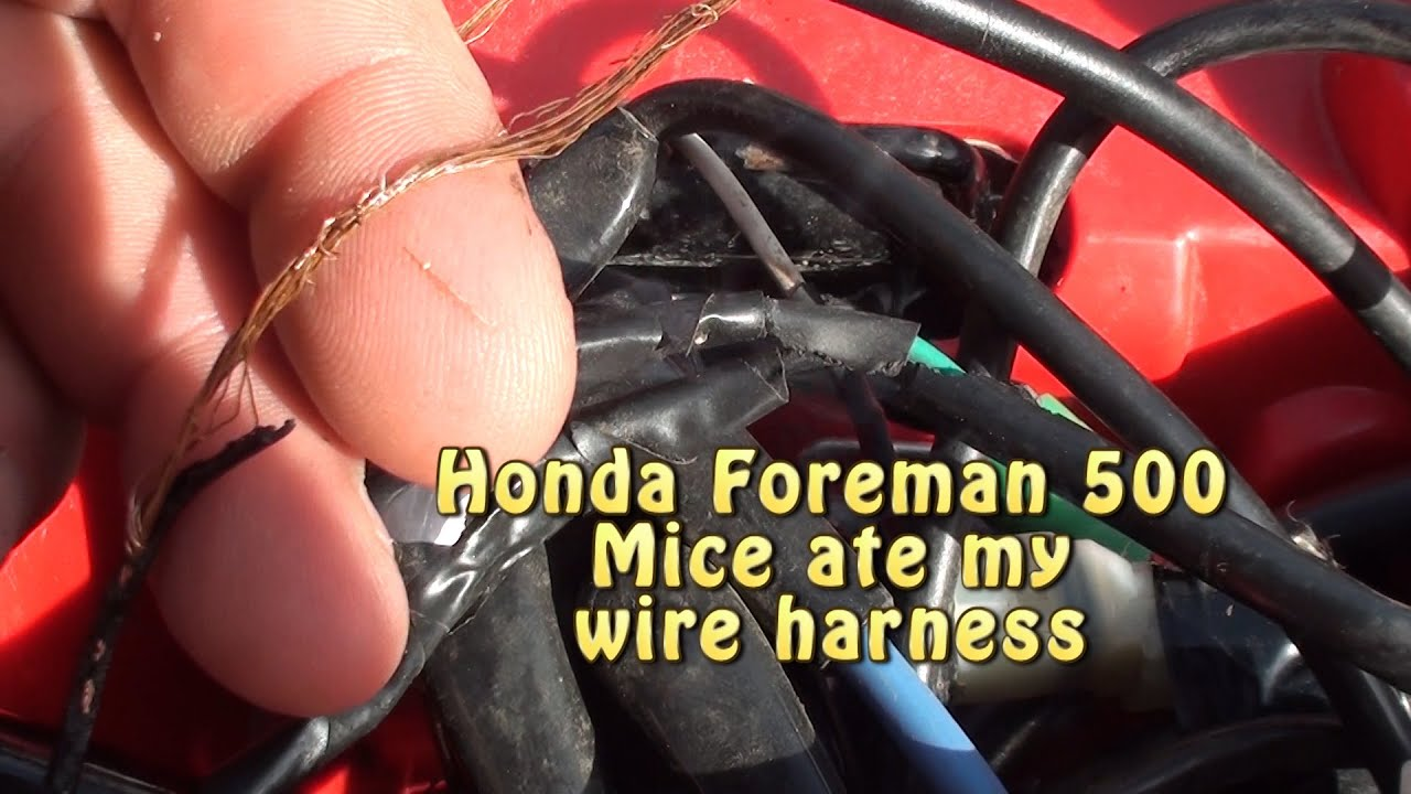 honda foreman mice ate my wire harness permatex liquid black tape [ 1280 x 720 Pixel ]