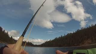 Darke lake fishing