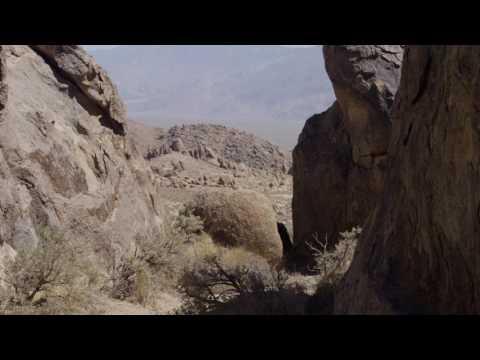 the-oyler-house:-richard-neutra's-desert-retreat---4k-trailer