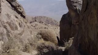 The Oyler House: Richard Neutra's Desert Retreat - 4K Trailer