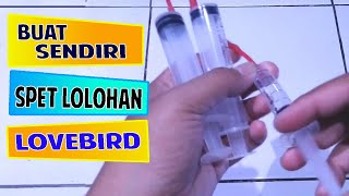 Zapętlaj Cara Membuat Spet Lolohan Lovebird | Epin Pino