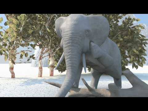Funny Elephant Animation