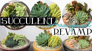 Succulent Arrangement Revamp! March 2020