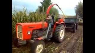 akcja kukurydza 2013 c 360 pz mh 80 s