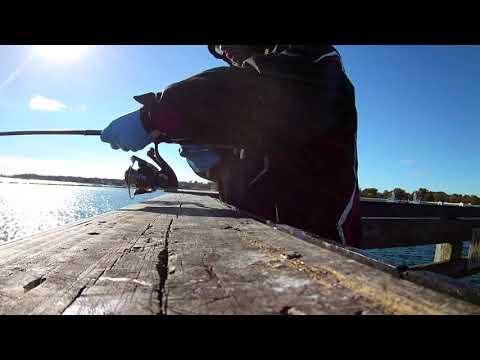 Black Fishing At Playland Park