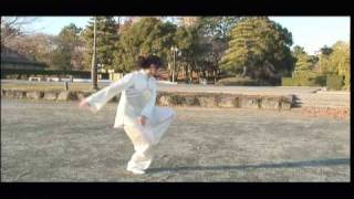 陳氏太極拳精要十八式 Taiji Chen Style 18 form