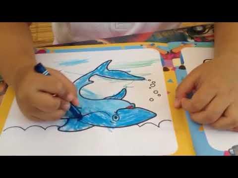 Belajar Mewarnai Ikan Hiu Youtube