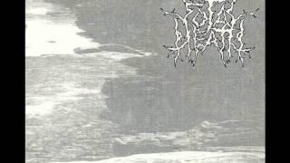 total death - campo de rosas - EP silencio de soledad