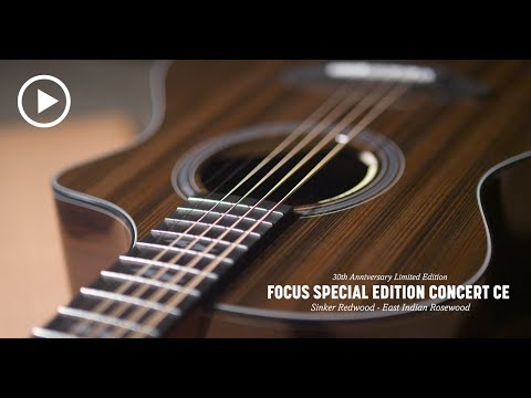 Breedlove 30th Anniversary Focus Special Edition Concert CE