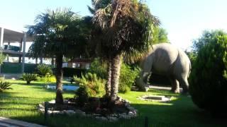 camping l'alqueria Gandia Valencia 2015