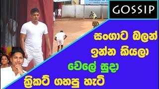Wele suda playing Cricket - සංගාට බලාගෙන ඉන්න කියලා වෙලේ සුදා ක්රිකට් ගහපු හැටි