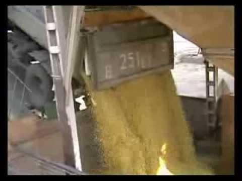 Предварительная очистка зерна (зернового вороха) на сортировке С-2-1500П