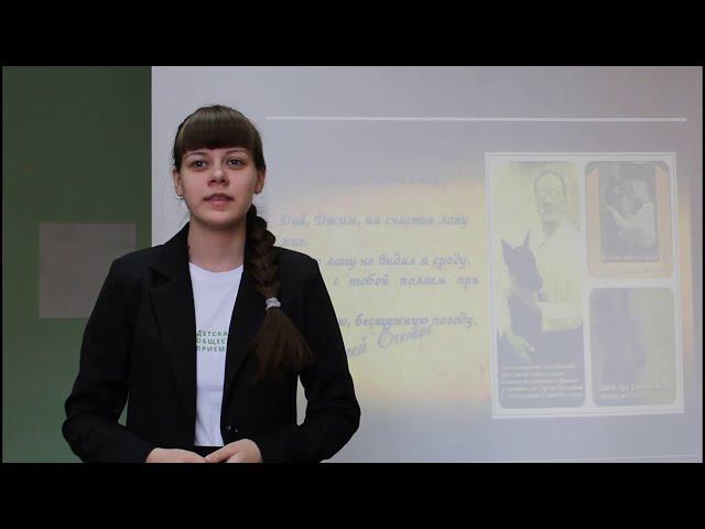 Изображение предпросмотра прочтения – ВиталинаКосова читает произведение «Собаке Качалова» С.А.Есенина
