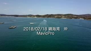 錦海湾沖合