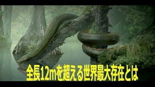 不気味で怖い絶滅した古代生物。一度閲覧すると忘れらない巨大生物30...