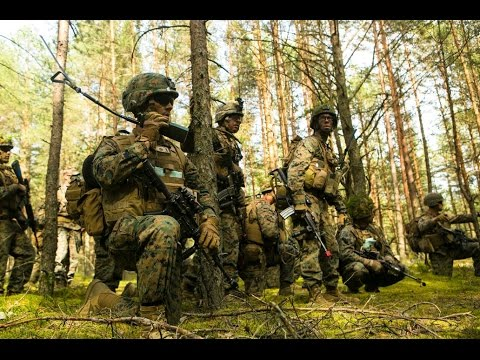 Marine Corps Forces Europe at Saber Strike 16