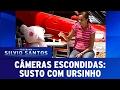 Susto Com Ursinho  C Meras Escondidas (05 02 17)