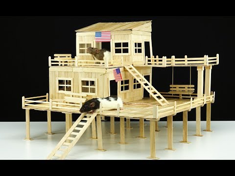 DIY Amazing American House for 2 Pet Rats