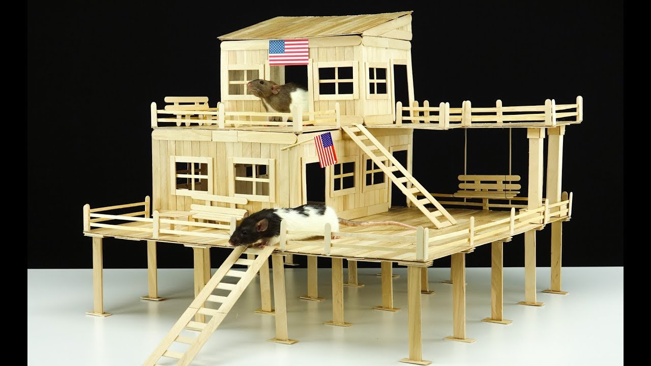 DIY Amazing American House for 2 Pet Rats - YouTube