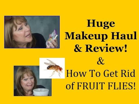 Mid-Month MAKEUP HAUL & Review!+  Get Rid of FRUIT FLIES!
