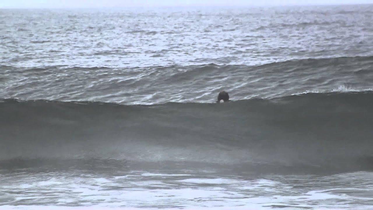 narragansett surf report