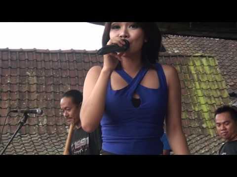 #Lagu Terlaris heboh saat ini #Cinta Terlarang #Puput Tifizya #CMDJ PRODUCTION