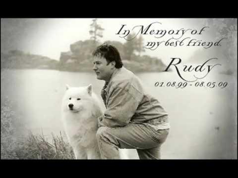 Rudy – Oakbrook Samoyeds