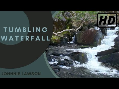 1 Hour HD-Nature Sounds Meditation insomnia Relaxation Birdsong Study Aid-Johnnie Lawson