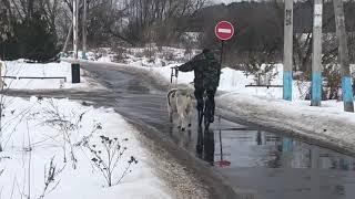 тринадцатимесячный Джихангир АН-НАССИР
