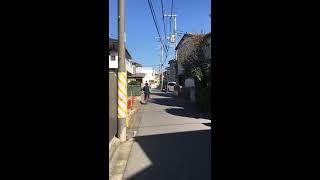 Tokyo  neighborhood afternoon stroll and talk