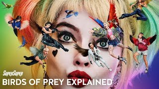 Birds of Prey Movie Explained in Hindi | SuperSuper