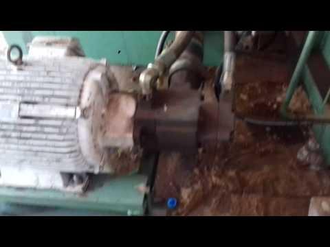 Mụn xơ dừa xử lý ép xuất khẩu