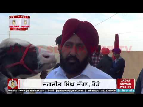 Most expensive buffalo sold from village rode, Bull bided for 8 Crore