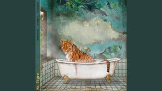 Play Sr. Tigre (French Braids Rework)