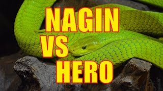 HERO -Vs - NAGIN - Vs - HORN_PARTY_MIX - BEND