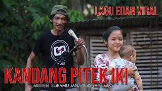 LAGU LUCU KANDANG PITEK IKI MP3