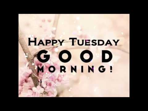Good Morning Tuesday Images, Whatsapp Images, Flowers Images, Beautiful Images & E- Cards
