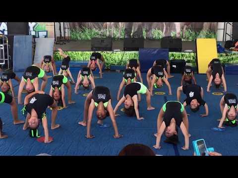 Rock Star Gymnastics Academy at San Diego County Fair!