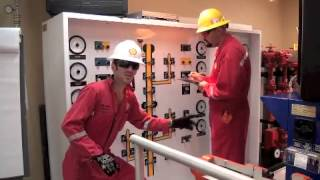 Shell Process Safety