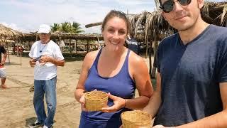 23-09-2019 -- Acapulco Horseback Riding & Baby Turtle Release by Rudy Fregoso TourByVan