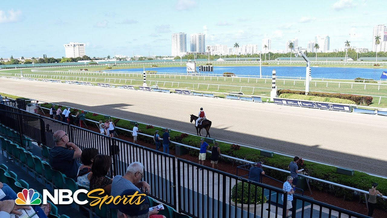 Horse Racing Picks for Saturday, March 28: Full Florida Derby ...