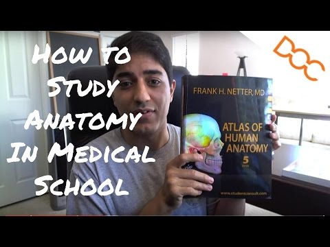 How To Study Anatomy In Medical School Youtube
