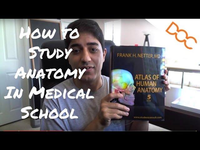 3 Ways To Study Anatomy Wikihow