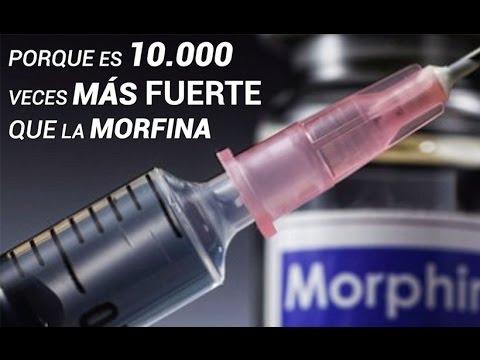 Carfentanil: La Droga 50 Veces Más Potente Que La Heroína