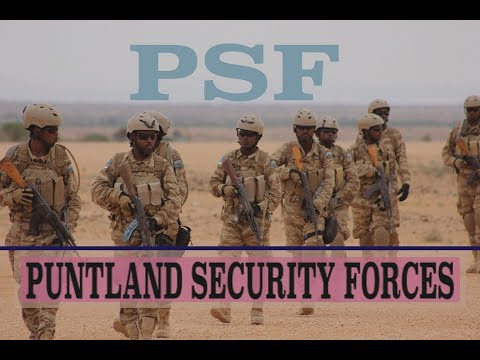 Maxaad ka taqaan ciidamada 'Puntland Security Force (PSF)' ee Mareykanku maalgaliyo?