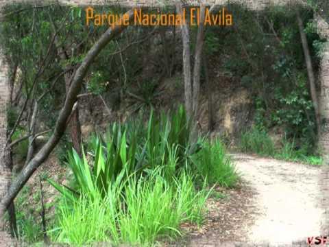 Parque Nacional El Avila 2005