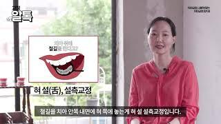 [3M 교정 알톡] 나에게 맞는 치아교정 장치 II