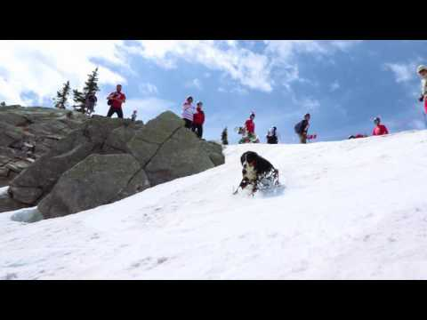Skiing at Big White on Canada Day, July 1